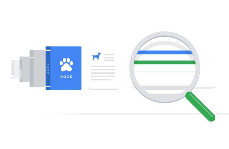 Algoritmo de búsqueda de Google - Agencia SEOlogy